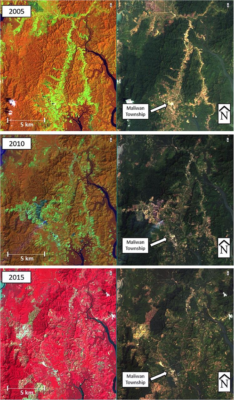 Palm Oil in Myanmar: A Spatiotemporal Analysis of the